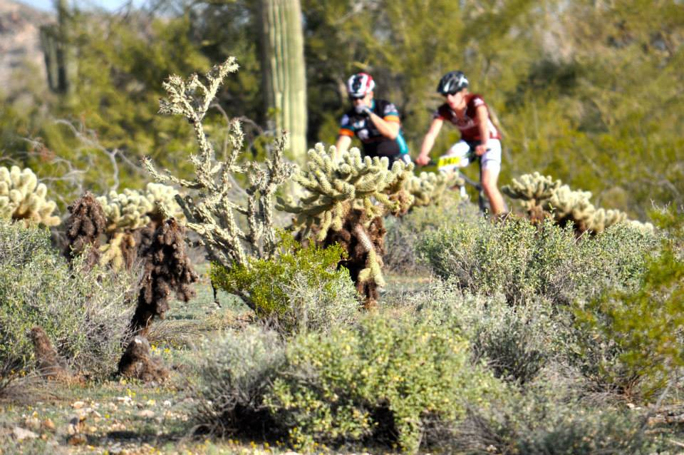 Cactus Cup 2020.2020 Specialized Cactus Cup Clipped In